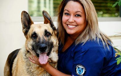 Man's Best Friend Could Get a Healthcare Job: Blood Sugar Monitor